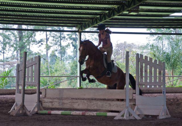 Miki Jumping 2013